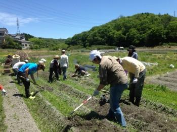 農業体験ホームページ用写真1