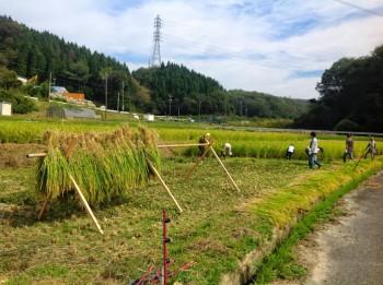 農業体験HP写真3